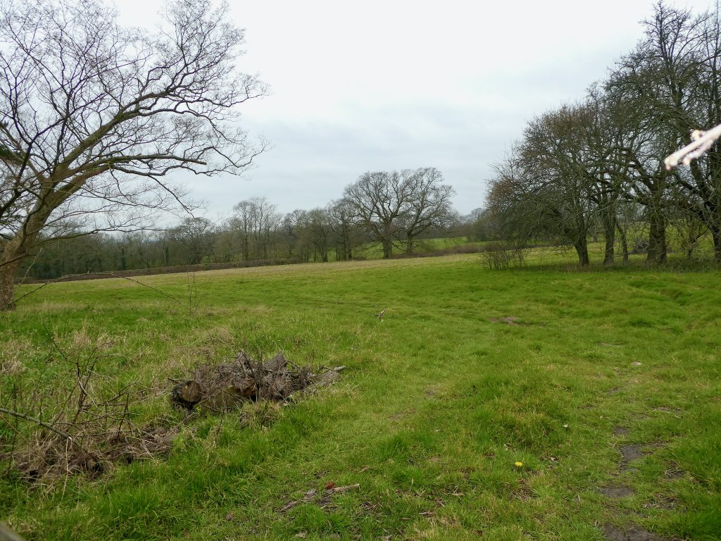Greenfield site not selected
